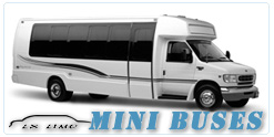 Mini Bus rental in Reno, NV